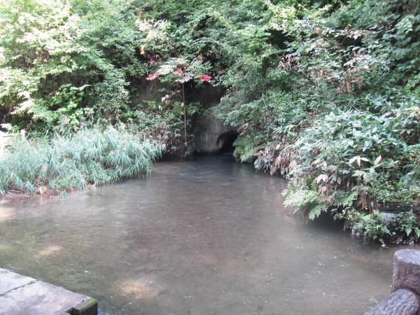 会津若松厳島神社境内の池