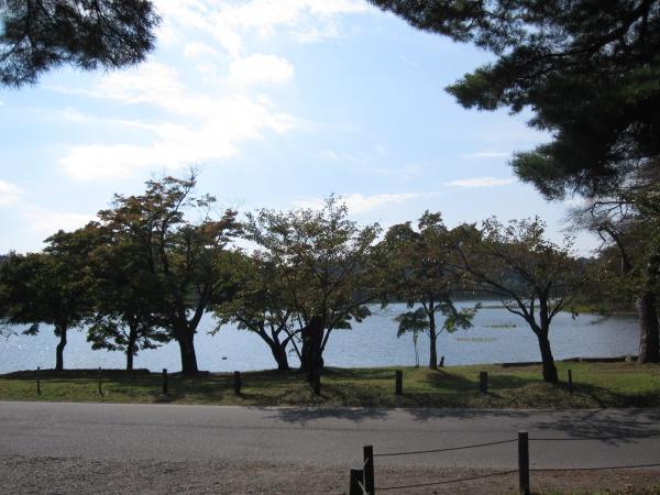 南湖公園の風景