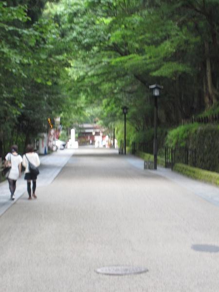 日光二荒山神社参道