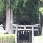 日光の青龍神社の鳥居