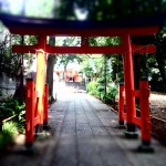 自由が丘 熊野神社の鳥居