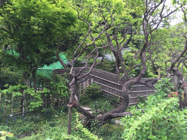 東慶寺の境内庭