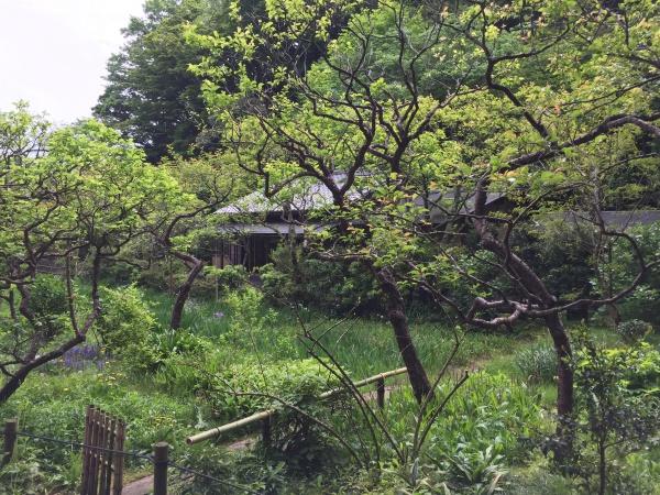 東慶寺の境内風景