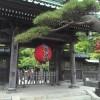 鎌倉の長谷寺の観音山の裾野に広がる下境内