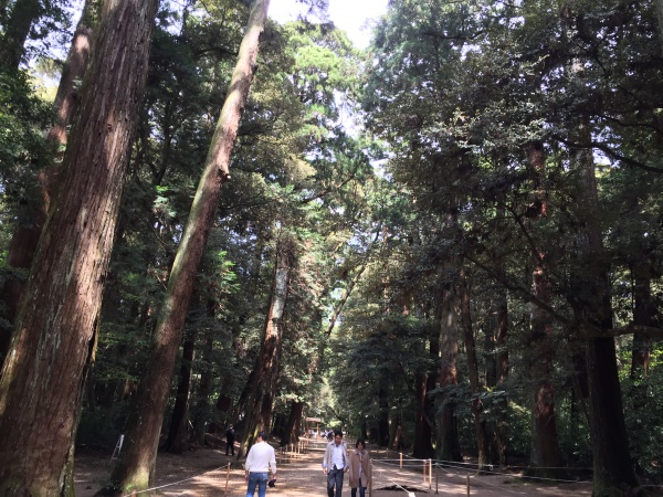 鹿島神宮の奥参道