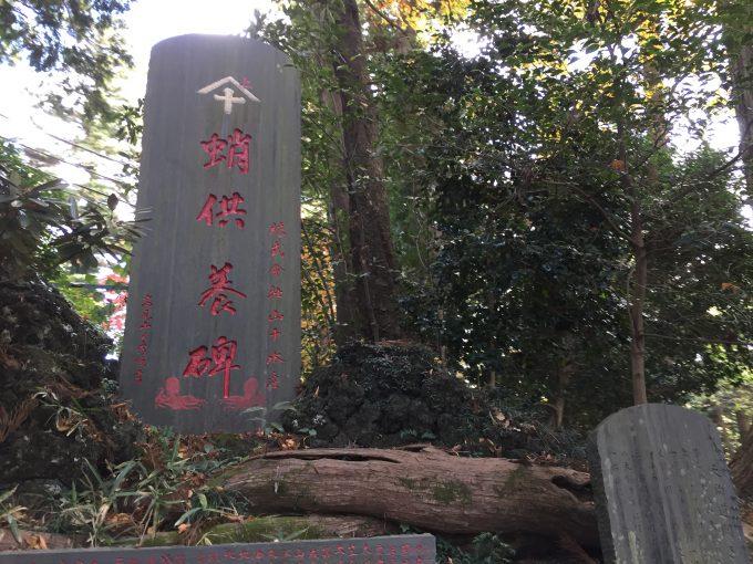 高尾山薬王院のたこ杉