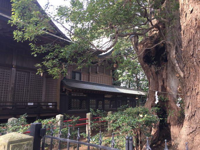 神崎神社(こうざきじんじゃ)の本殿