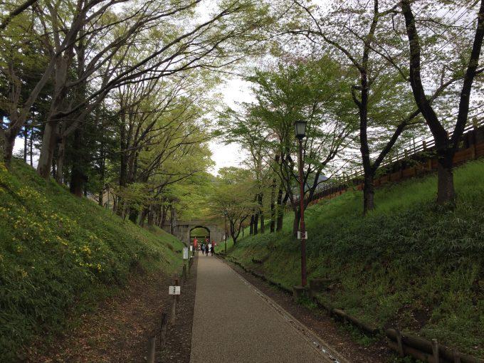 けやき並木遊歩道