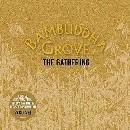 Bambuddha Grove The Gathering (vol 4)の紹介と感想(おススメアルバム)BambuddhaGrove theGathering 1
