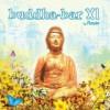 Buddha Bar 11の紹介と感想(おススメアルバム)