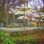 NASU SHOZO CAFEの秋 那須町で人気のカフェTochigi 20111114 113329 150x150