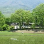 二期倶楽部のキッチンガーデンは日本一の朝食を支える場所、そして東館の遠景Tochigi 20120521 103810 150x150