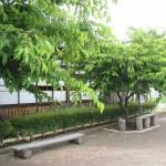 黒羽くらしの館で蕎麦を食べ、ピオーネを買ってTochigi 20120618 150319 150x150