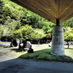 中禅寺金谷ホテル 日光Tochigi 20140601 130429000 150x150