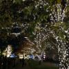 ミッドタウン・クリスマス2014 クリスマスのイルミネーション@東京ミッドタウンTokyo 20141127 202608 100x100