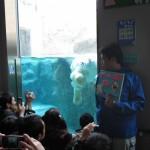 ほっきょくぐま館でもぐもぐタイム!旭山動物園 旭川市 北海道Hokkaidou 20121022 112428 150x150