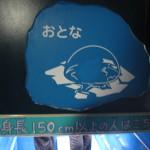 ほっきょくぐま館でもぐもぐタイム!旭山動物園 旭川市 北海道Hokkaidou 20121022 113104 150x150