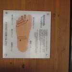 塩原温泉湯っ歩の里 足に効くツボたちShiobaraonsen 20120910 124602 150x150