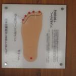 塩原温泉湯っ歩の里 足に効くツボたちShiobaraonsen 20120910 124750 150x150