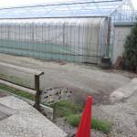 千本松牧場の足湯 場所がわかりにくいのなんのって…。Tochigi 20120903 162855 150x150