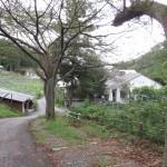 ココ・ファーム・ワイナリー 足利市のワイナリーのワインはリーズナブルで美味しいTochigi 20120917 154216 150x150