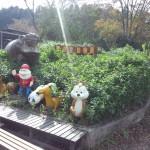 宇都宮動物園 ファミリー向けの手頃な大きさの動物園Tochigi 20131103 120609 150x150