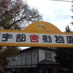 宇都宮動物園 ファミリー向けの手頃な大きさの動物園Tochigi 20131103 124447 150x150