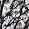 藤城清治美術館 那須高原に行ったら見に行ってみたらいい美術館Tochigi 20131124 122709000 100x100