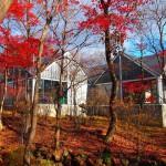 藤城清治美術館 那須高原に行ったら見に行ってみたらいい美術館Tochigi 20131124 123329000 150x150