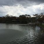 那須りんどう湖 LAKE VIEW(旧りんどう湖ファミリー牧場) 2015年の初秋Tochigi 20151004 115132024 150x150