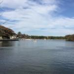 那須りんどう湖 LAKE VIEW(旧りんどう湖ファミリー牧場) 2015年の初秋Tochigi 20151004 142917000 150x150