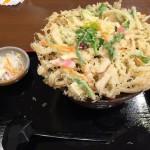 道の駅ばとうで「かきあげ蕎麦」の夕食Tochigi 20160320 183519000 150x150