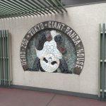 上野動物園のハシビロコウがキャラが立っていた(写真撮り忘れ・・・)Tokyo 20160502 09465333180 150x150