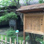 上野動物園のハシビロコウがキャラが立っていた(写真撮り忘れ・・・)Tokyo 20160502 10013833180 150x150