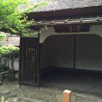 上野動物園のハシビロコウがキャラが立っていた(写真撮り忘れ・・・)Tokyo 20160502 10015933180 150x150