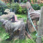 上野動物園のハシビロコウがキャラが立っていた(写真撮り忘れ・・・)Tokyo 20160502 10111633180 150x150