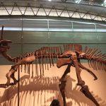 ギガ恐竜展2017@幕張メッセChiba 20170716 134038024 150x150