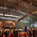 ギガ恐竜展2017@幕張メッセChiba 20170716 134213024 150x150